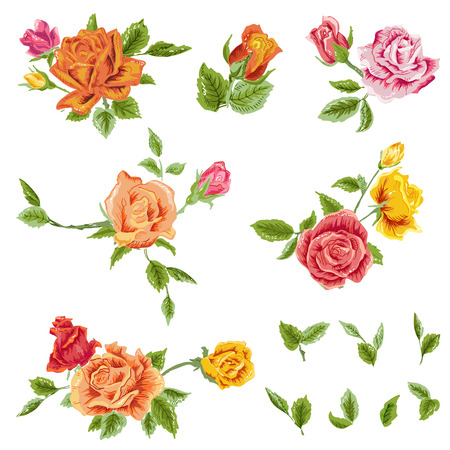 rose stem: Watercolor Roses Set floral background Illustration