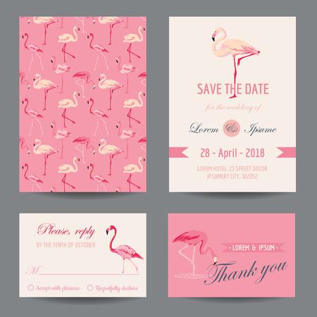 flamenco ave: Invitación  Tarjeta Enhorabuena Set - Flamingo Theme - vector