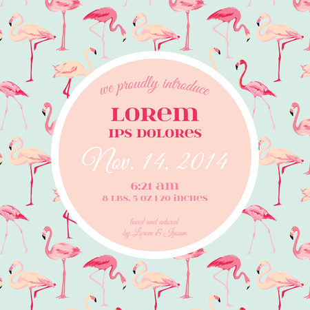 announcements: Baby Arrival or Shower Card - with Flamingo Bird Design - in vector