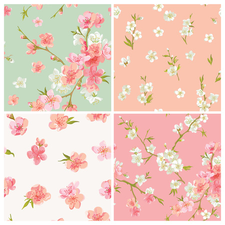 Set of Spring Blossom Flowers Background - Seamless Floral Shabby Chic Patterns - in vector Illustration