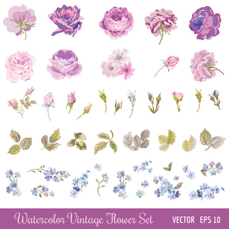 Vintage Flower Set - Watercolor Style - in vector 스톡 콘텐츠 - 44238516