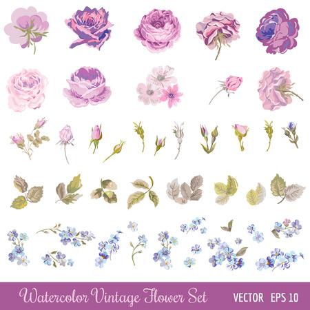 Vintage Virág Set - akvarell stílusban - vektor