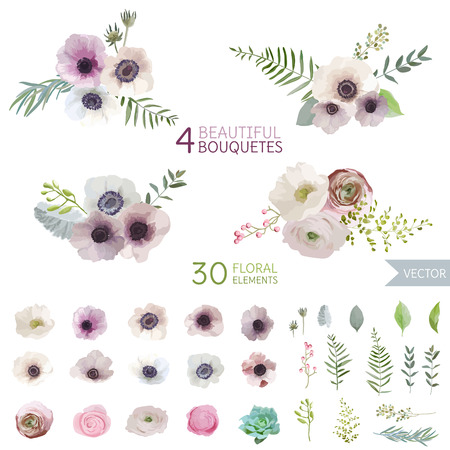anemone flower: Flowers and Leaves - in Watercolor Style - vector Illustration