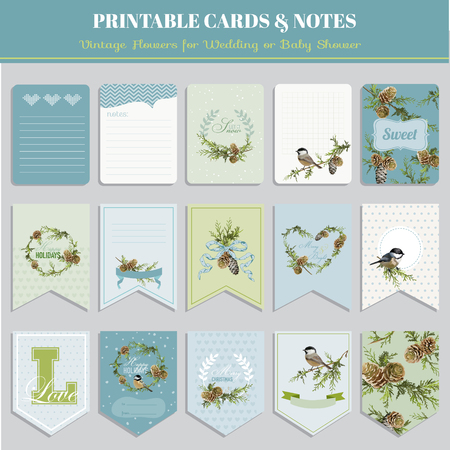 scrap: Cards, Tags and Labels - Christmas Winter Birds Theme - in vector Illustration