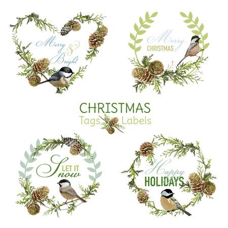 pomme de pin: Oiseaux vintages de Noël - Bannières, étiquettes et les étiquettes - dans le vecteur Illustration