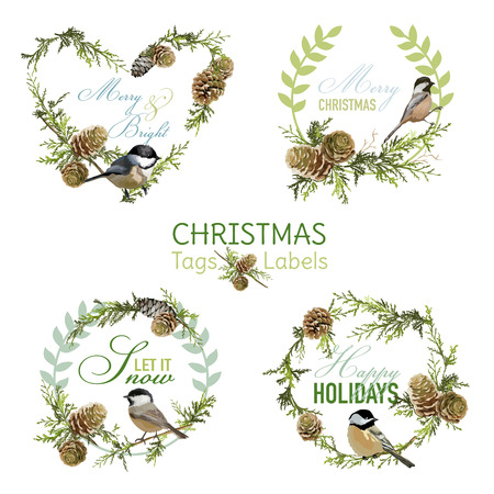 pine cone: Vintage Christmas Birds - Banners, Tags and Labels - in vector