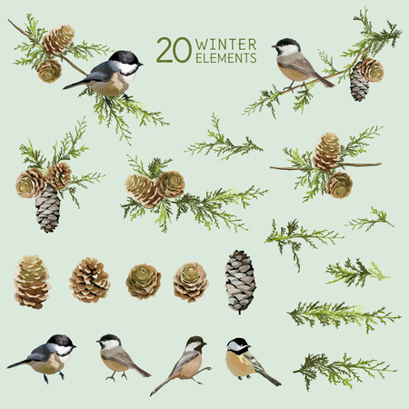 birds: Retro Birds and Winter Elements- in Watercolor Style - vector