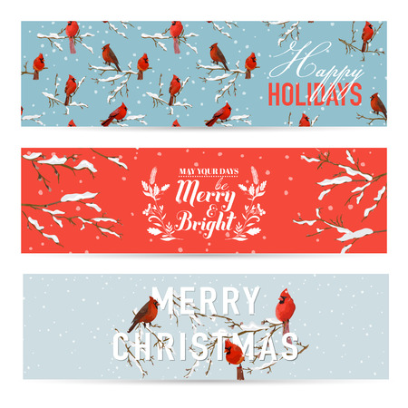 scrap: Christmas Banners, Labels, Tags - Vintage Winter Birds -  in vector