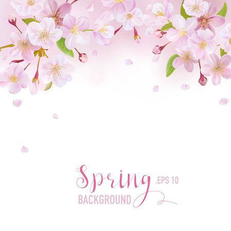 벚꽃 봄 배경 - 당신의 텍스트에 대 한 장소 - 벡터 일러스트