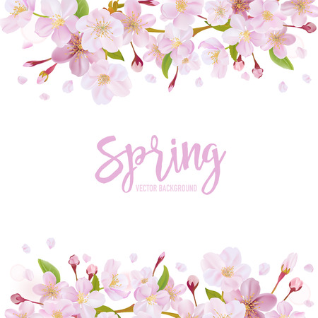 桜の花が春の背景のベクトル  イラスト・ベクター素材