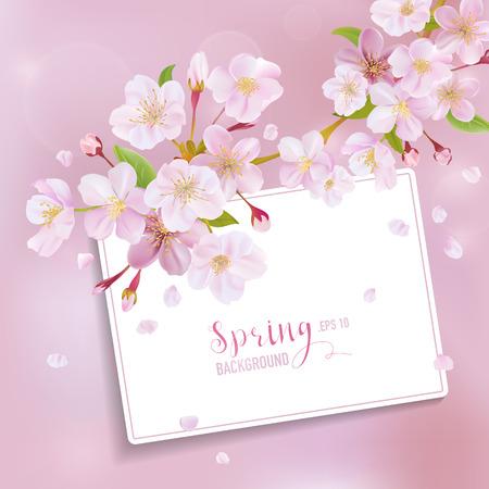벚꽃 봄 배경 - 텍스트 카드 - 벡터에 일러스트