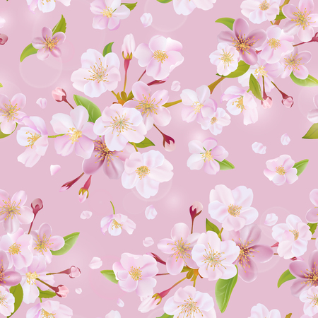 cherries: Cherry Blossom Spring Background - Seamless Pattern - in vector