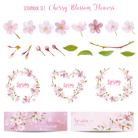 Cherry Blossom Spring Background - in vector Çizim