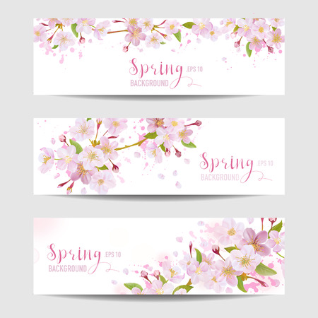 Spring Flower Banner Set - Cherry Blossom Tree - in vector Illustration