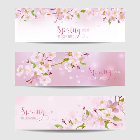 봄 꽃 배너 설정 - 벚꽃 나무 - 벡터 일러스트