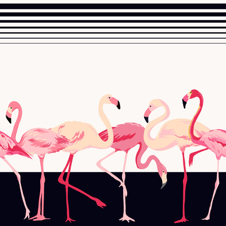 pink flamingo: Flamingo Bird Background - Retro Seamless Pattern - in vector