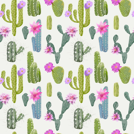 exotic plant: Vector Cactus Background. Seamless Pattern. Exotic Plant. Tropical Background.