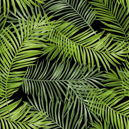 シームレス パターン。熱帯のヤシの葉の背景。ベクトルの背景。  イラスト・ベクター素材