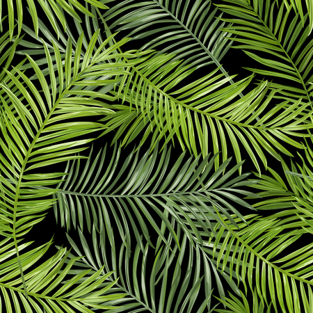 Seamless Pattern. Tropical Palm Leaves Background. Vector Background.