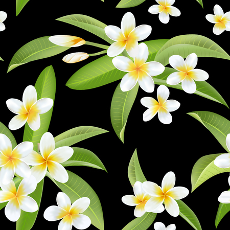 Tropical Flowers and Leaves Pattern. Seamless Background. Exotic Plumeria Flower. Vector