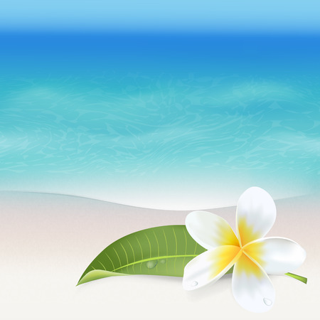 tropical flower: Realistic Sea Background. Tropical Flower. Beach Background. Vector