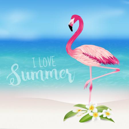 flamenco ave: Antecedentes tropical. Flor tropical y pájaro del flamenco. Playa de fondo. Vector Vectores