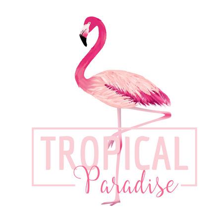 Tropenvogel. Flamingo Hintergrund. Summer Design. Vektor. T-Shirt Mode Graphic. Exotische Hintergrund. Standard-Bild - 55922663