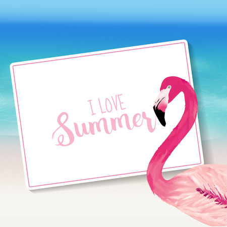 sea bird: Realistic Sea Background. Tropical Flamingo Bird. Beach Background. Card for Text. Vector Illustration