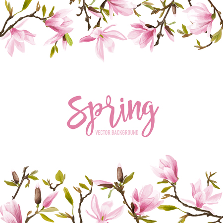 blossom background: Spring Blossom Background - Magnolia Flowers - in vector