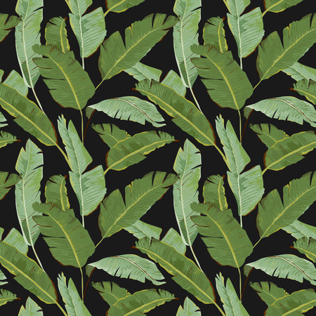 Seamless Pattern. Tropical Palm Leaves Background. Banana Leaves. Vector Background. Çizim