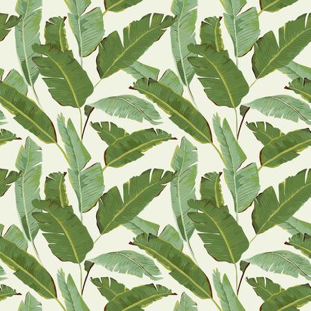 Seamless Pattern. Tropical Palm pozostawia tła. Liście bananowca. Wektor tła.