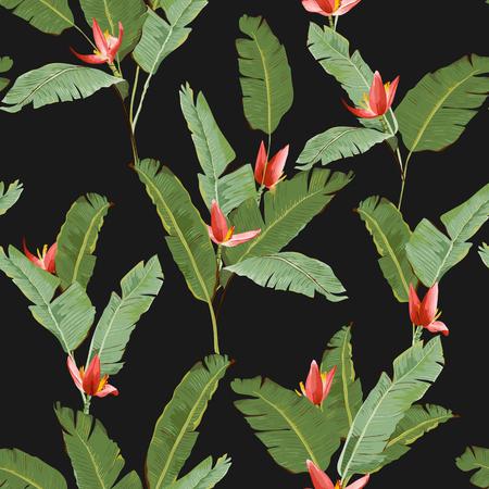 Motif continu. Palm Tropical Leaves Background. Feuilles de banane. Fleurs Banana. Vector Background. Vecteurs