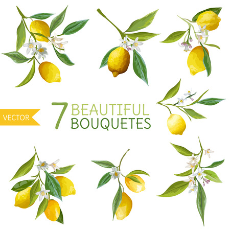 blossom: Vintage Lemons, Flowers and Leaves. Lemon Bouquetes. Watercolor Style Lemons. Vector Fruit Background.