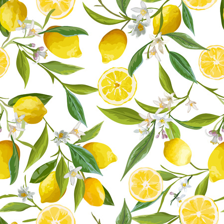Seamless Pattern. Lemon Fruits Background. Floral Pattern. Flowers, Leaves, Lemons Background. Vector Background. Illustration