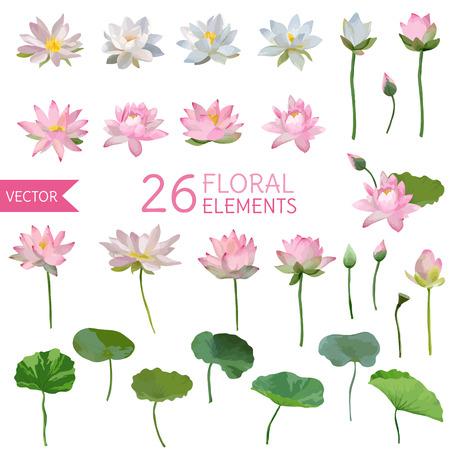 Waterlily Flores de la vendimia en estilo de la acuarela. Conjunto de vectores Ilustración de vector