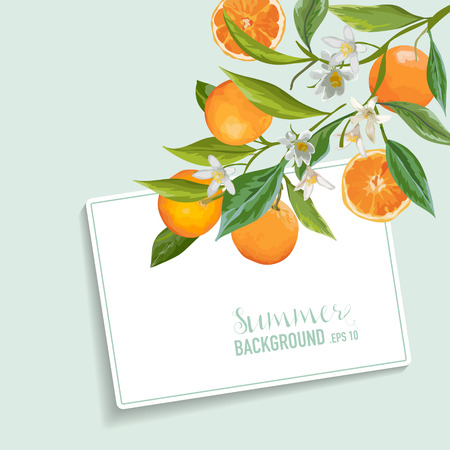 orange blossom: Oranges and Flowers Card. Fruit Background. Wedding Invitation. Vector Card.