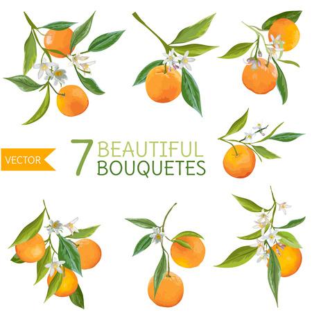 Vintage Sinaasappels, Bloemen En Bladeren. Oranje Bouquetes. Waterverfstijl. Vector Fruit Achtergrond.
