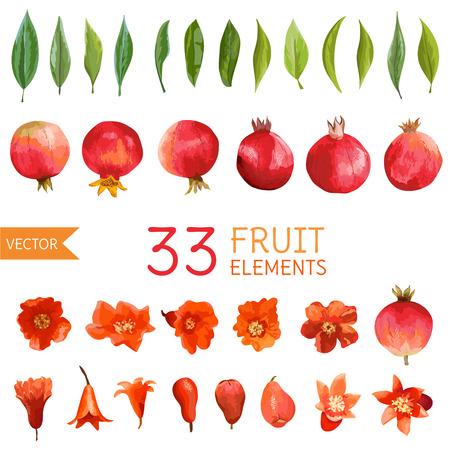 Jahrgang Pomegranates, Blumen und Blätter. Aquarell Stil Obst. Vektor