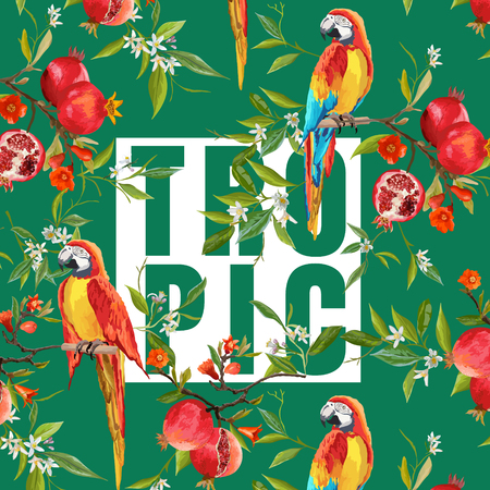 pomegranat: Vintage Pomegranates, Flowers and Parrot Birds in Watercolor Style. T-shirt Graphic Design in Vector