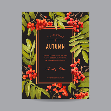 ash berry: Vintage Floral Frame - Autumn Rowan Berries - for Invitation, Wedding, Baby Shower Card - in Vector