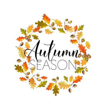 autumn fashion: Colorful Autumn Leaves Background. Floral Design. T-shirt Fashion Graphic. Illustration