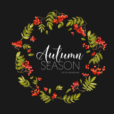 autumn fashion: Autumn Rowan Berry Background. T-shirt Fashion Graphic.