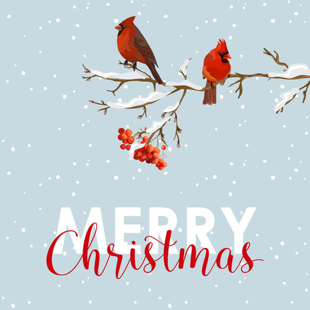 Merry Christmas Card - Winter Birds with Rowan Berries Banner - in vector