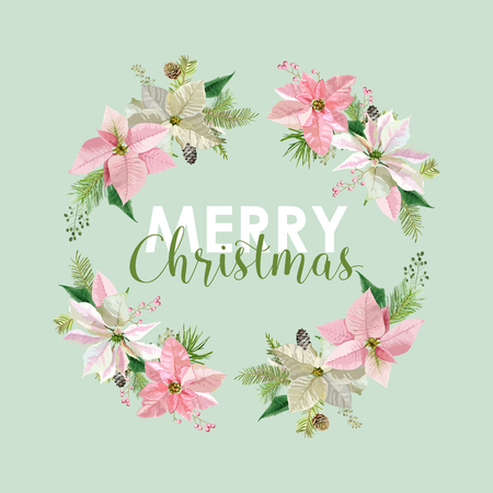 winter flower: New Year and Christmas Card - Vintage Flowers Poinsettia Pink Background - in Vector