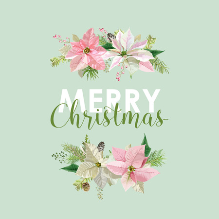 christmas vintage: New Year and Christmas Card - Vintage Flowers Poinsettia Pink Background - in Vector