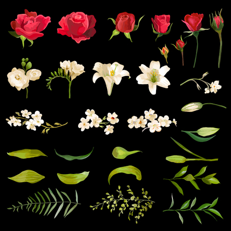 lily flowers: Vintage Lily and Rose Flowers Set in Watercolor Style. Vector