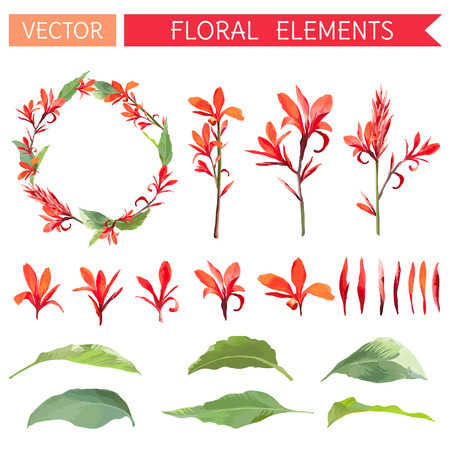 topical: Topical Flowers and Leaves. Floral Bouquetes in Watercolor Style. Vector Set.