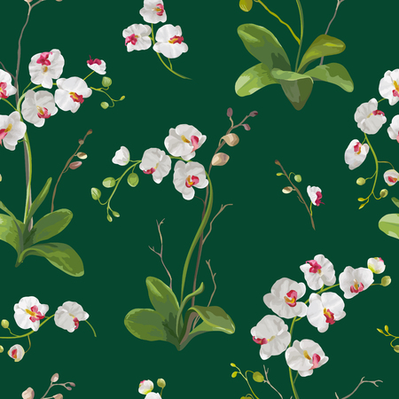 Orchid Tropical Leaves and Flowers Background. Seamless Pattern in Vector