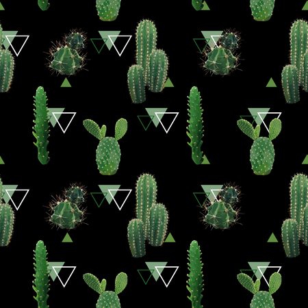 Geometric Cactus Plant Seamless Pattern. Exotic Tropical Summer Botanical Background in Vector.