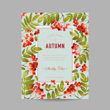 Autumn Photo Frame with Rowan Berry and Leaves. Seasonal Fall Design Card. Vector illustration Illustration